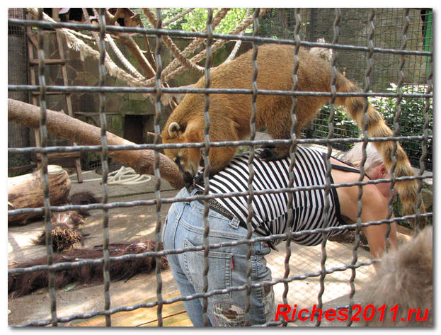 зоопарк-ялта