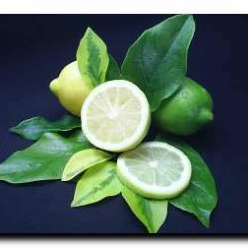 Применение лимона или как использовать лимон дома.