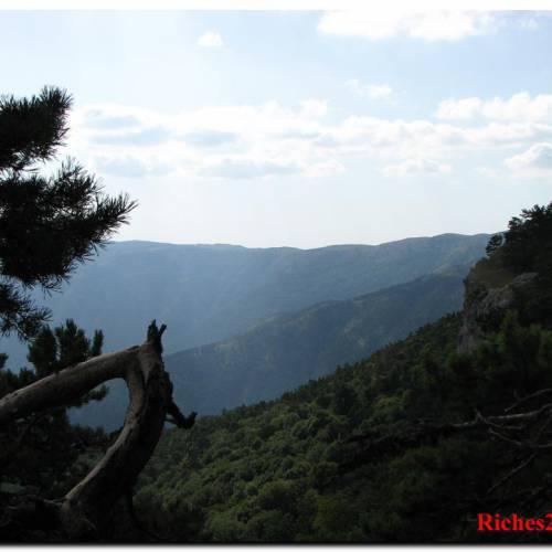 Крымский природный заповедник или заповедный горный Крым