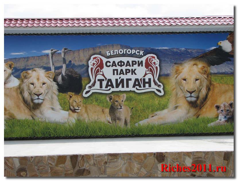 Сафари — парк в Крыму. Самостоятельная экскурсия.